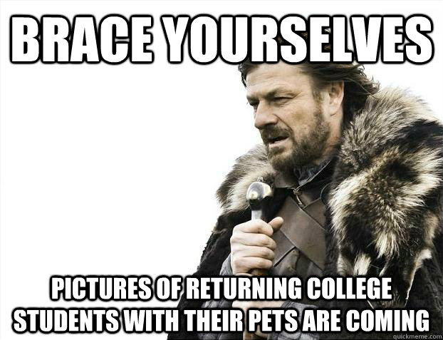 Brace yourselves Pictures of returning college students with their pets are coming