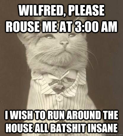 Wilfred, please rouse me at 3:00 AM I wish to run around the house all batshit insane