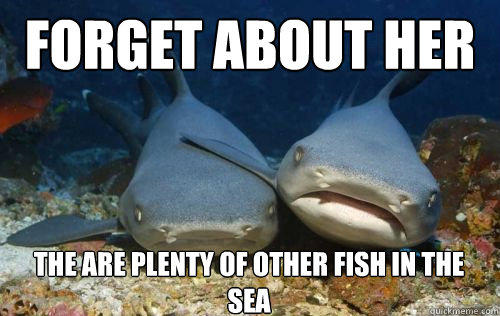 Forget about her the are plenty of other fish in the sea