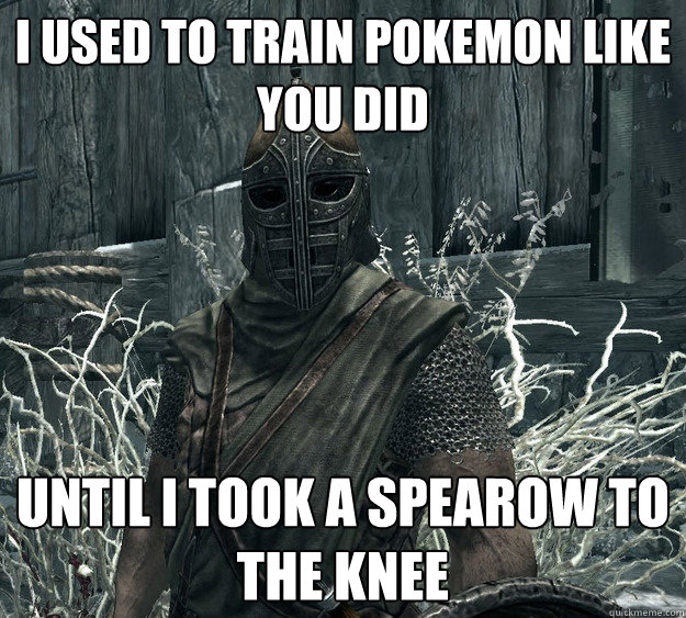 I used to train Pokemon like you did Until I took a Spearow to the knee - I used to train Pokemon like you did Until I took a Spearow to the knee  Skyrim Guard