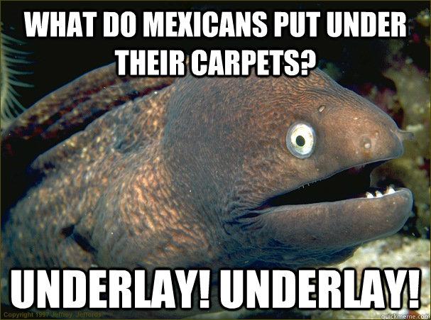 What do Mexicans put under their carpets? UNDERLAY! UNDERLAY!  Bad Joke Eel