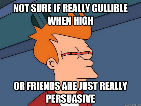 Not sure if really gullible when high Or friends are just really persuasive