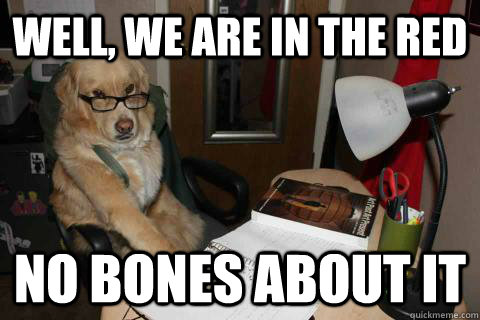 Well, we are in the red no bones about it - Well, we are in the red no bones about it  Financial Advice Dog