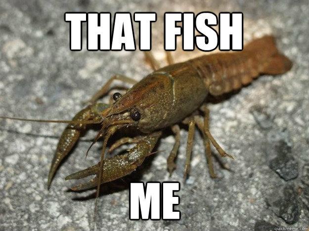 That Fish Me