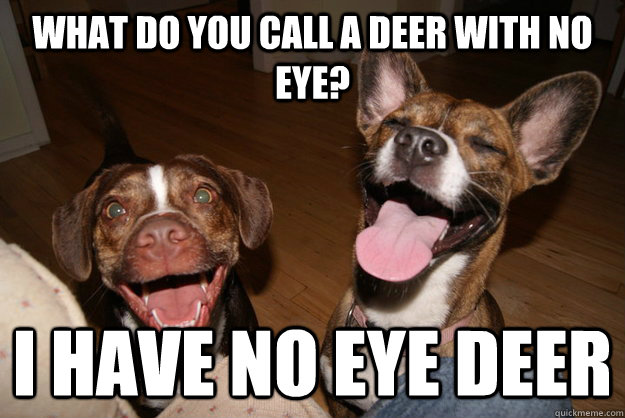 What do you call a deer with no eye? I have no eye deer - What do you call a deer with no eye? I have no eye deer  Clean Joke Puppies
