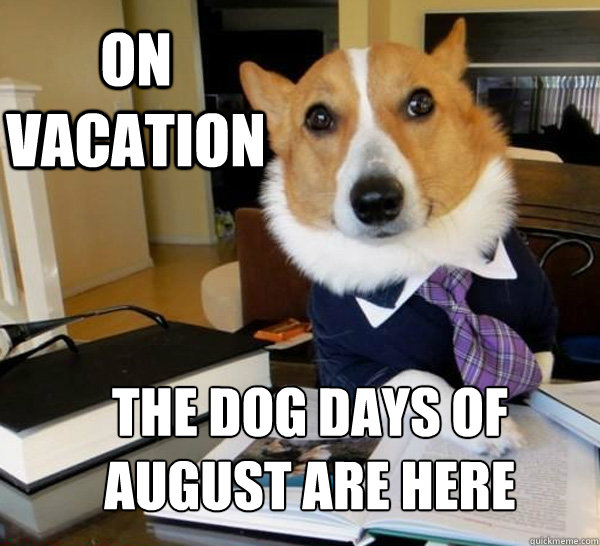 on vacation the dog days of august are here - on vacation the dog days of august are here  Lawyer Dog
