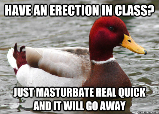 have an erection in class? just masturbate real quick and it will go away - have an erection in class? just masturbate real quick and it will go away  Malicious Advice Mallard