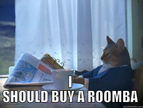 I SHOULD BUY A ROOMBA The One Percent Cat