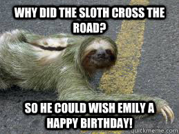 Why Did the sloth cross the road? So he could wish Emily a happy birthday! - Why Did the sloth cross the road? So he could wish Emily a happy birthday!  Creepy Sloth