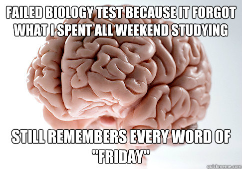 failed biology test because it forgot what I spent all weekend studying still remembers every word of