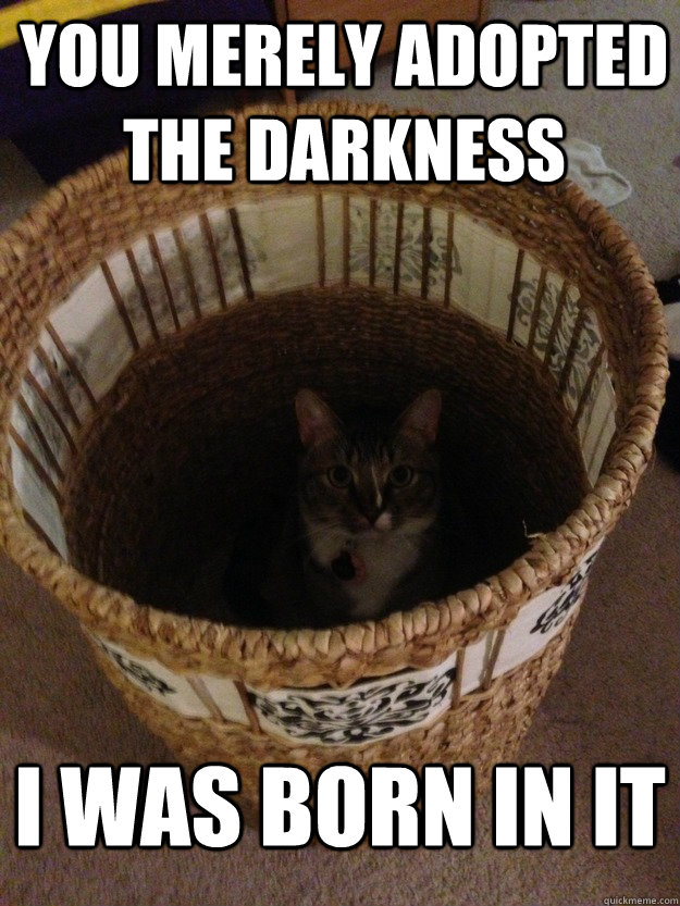 You merely adopted the darkness I was born in it - You merely adopted the darkness I was born in it  darkness cat
