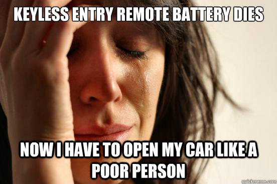 Keyless Entry Remote battery dies Now I have to open my car like a poor person - Keyless Entry Remote battery dies Now I have to open my car like a poor person  First World Problems