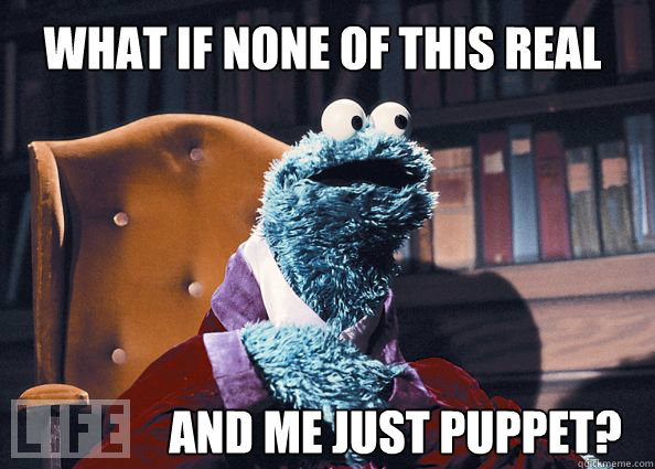 what if none of this real and me just puppet?
