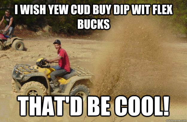 I WISH YEW CUD BUY DIP WIT FLEX BUCKS THAT'D BE COOL!