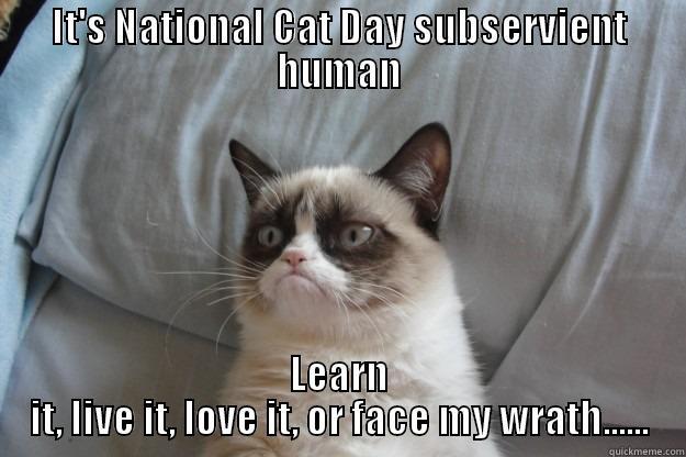 779229ec3df83145ed427a2c5d2db88d1b7c3077aba89577df6170aa7ec91691 national cat day quickmeme