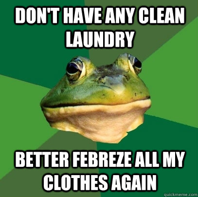 don't have any clean laundry better febreze all my clothes again - don't have any clean laundry better febreze all my clothes again  Foul Bachelor Frog