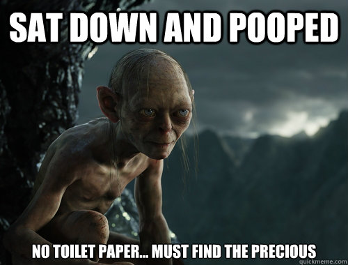 Sat down and pooped No toilet paper... must find the precious