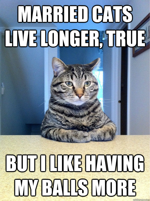 married cats live longer, true but i like having my balls more - married cats live longer, true but i like having my balls more  Chris Hansen Cat