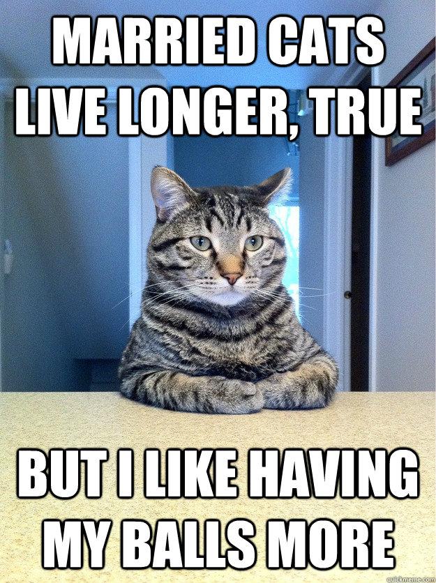 married cats live longer, true but i like having my balls more - married cats live longer, true but i like having my balls more  Chris Hansen Cat