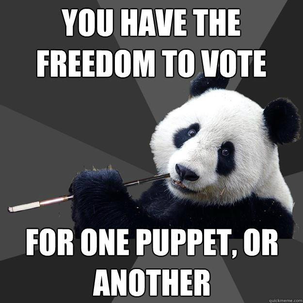 you have the freedom to vote for one puppet, or another