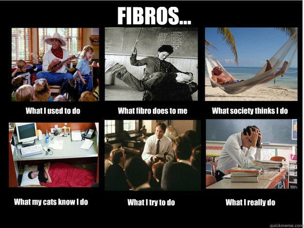 FIBROS... What I used to do What fibro does to me What society thinks I do What my cats know I do What I try to do What I really do  What People Think I Do