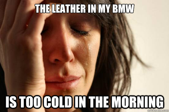 the leather in my bmw is too cold in the morning - the leather in my bmw is too cold in the morning  First World Problems