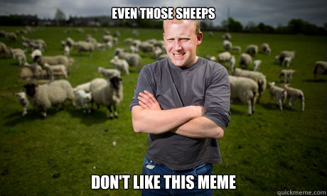even those sheeps don't like this meme