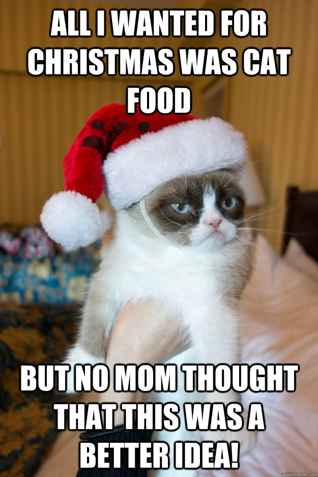 all i wanted for christmas was cat food but no mom thought that this was a better idea! - all i wanted for christmas was cat food but no mom thought that this was a better idea!  Grumpy xmas