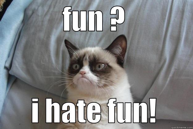 FUN ? I HATE FUN! Grumpy Cat