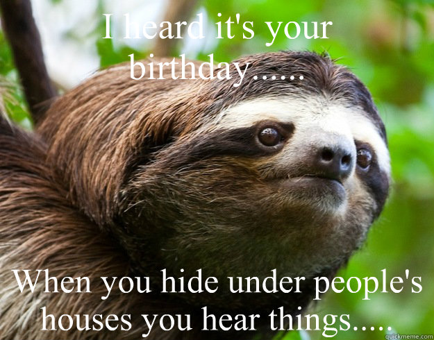 I heard it's your birthday...... When you hide under people's houses you hear things.....  happy birthday sloth