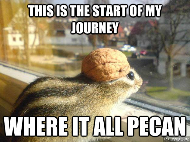 This is the start of my journey where it all pecan - This is the start of my journey where it all pecan  Adventure Chipmunk