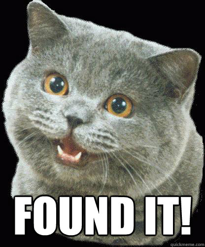 FOUND IT! -  FOUND IT!  HappyCat