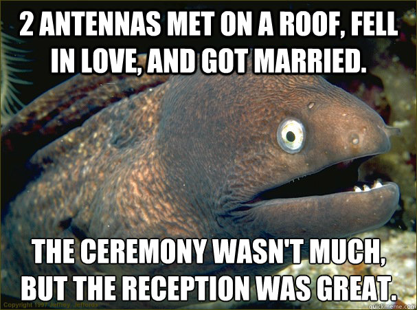 2 antennas met on a roof, fell in love, and got married. The ceremony wasn't much, but the reception was great. - 2 antennas met on a roof, fell in love, and got married. The ceremony wasn't much, but the reception was great.  Bad Joke Eel