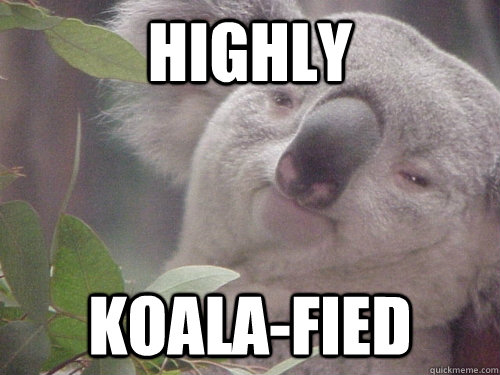 Highly koala-fied