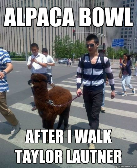 alpaca bowl after i walk taylor lautner