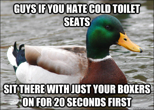 guys if you hate cold toilet seats sit there with just your boxers on for 20 seconds first - guys if you hate cold toilet seats sit there with just your boxers on for 20 seconds first  Actual Advice Mallard