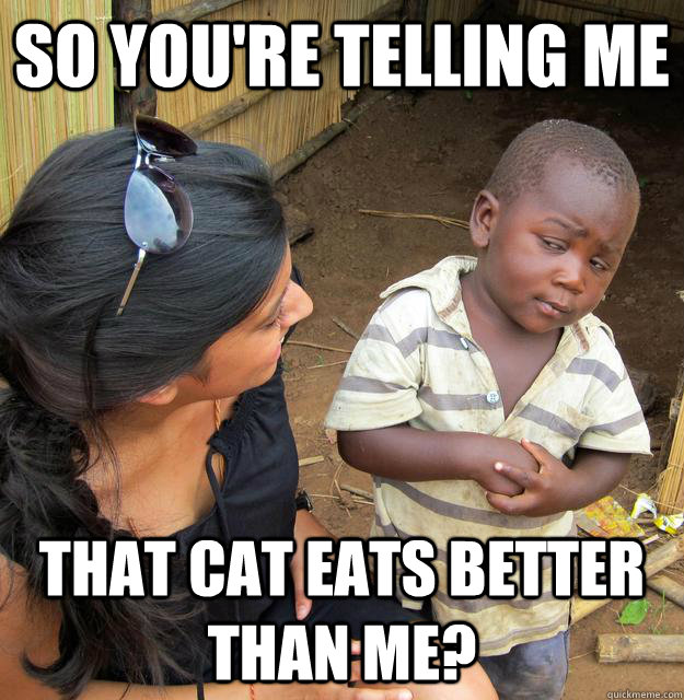 So you're telling me  that cat eats better than me?