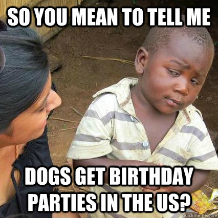 So you mean to tell me Dogs get birthday parties in the US? - So you mean to tell me Dogs get birthday parties in the US?  Skeptical African Baby