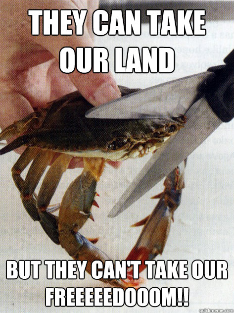 They can take our land But they can't take our               FREEEEEDOOOM!! - They can take our land But they can't take our               FREEEEEDOOOM!!  Optimistic Crab