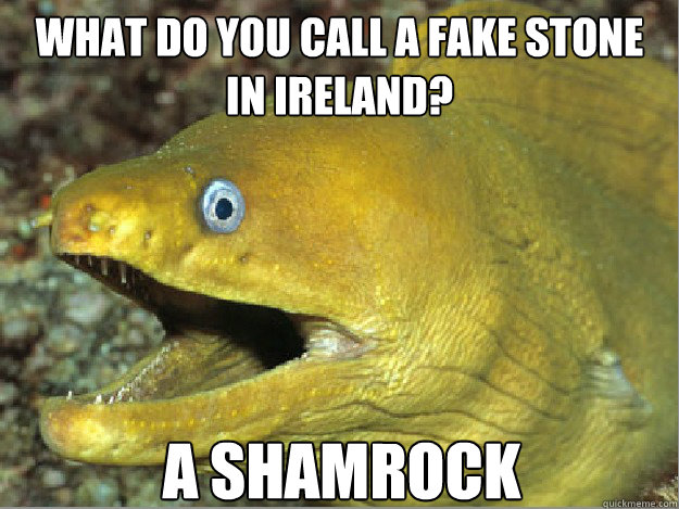 WHAT DO YOU CALL A FAKE STONE IN IRELAND? A SHAMROCK
