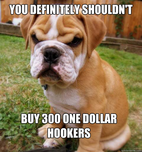 You definitely shouldn't Buy 300 one dollar hookers - You definitely shouldn't Buy 300 one dollar hookers  Disapproving puppy