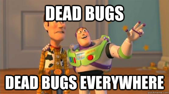 Dead bugs Dead bugs everywhere - Dead bugs Dead bugs everywhere  Buzz Glitter