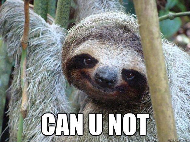 Sloth memes can u not - photo#3