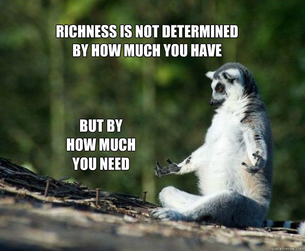 richness is not determined  by how much you have  but by  how much you need - richness is not determined  by how much you have  but by  how much you need  Misc