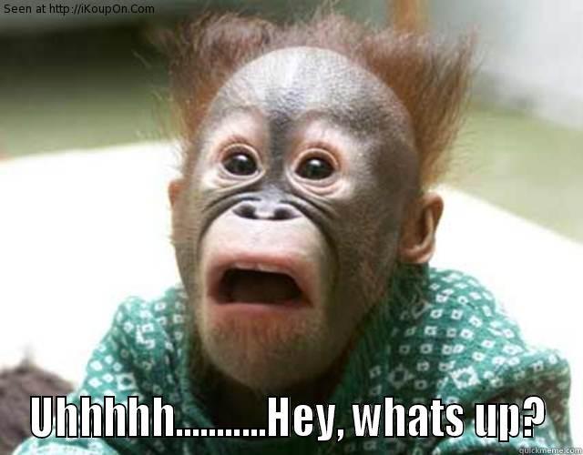Funny Meme Hi : Monkey say hi quickmeme