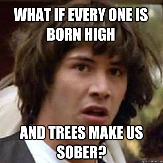what if every one is born high and trees make us sober?  conspiracy keanu