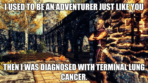 I Used To Be An Adventurer Just Like You Then I Was