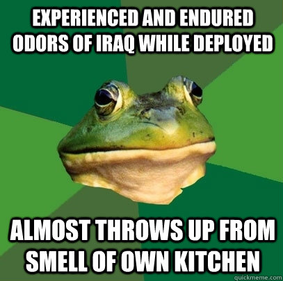 Experienced and endured odors of Iraq while deployed Almost throws up from smell of own kitchen - Experienced and endured odors of Iraq while deployed Almost throws up from smell of own kitchen  Foul Bachelor Frog