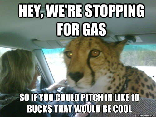 hey, we're stopping for gas so if you could pitch in like 10 bucks that would be cool