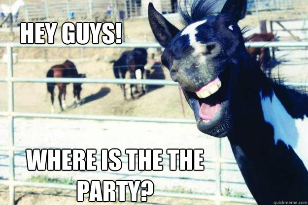 Hey Guys! Where is the the party? - Hey Guys! Where is the the party?  Party Horse